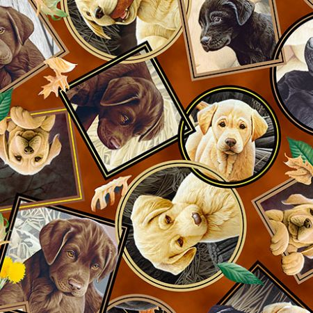 Labrador-able Qt Fabrics Labrador Portraits Brown