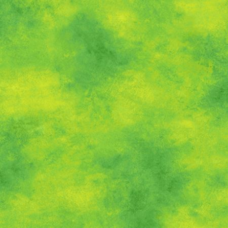Color Me Chameleon QT Fabrics Cloud Texture Green