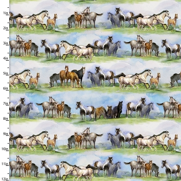 Sunflower Stampede 3 Wishes Scenic Horse Stripe