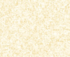 Color Blends QT Fabrics Vanilla
