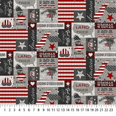 My America Northcott  Gray Multi My America Patches