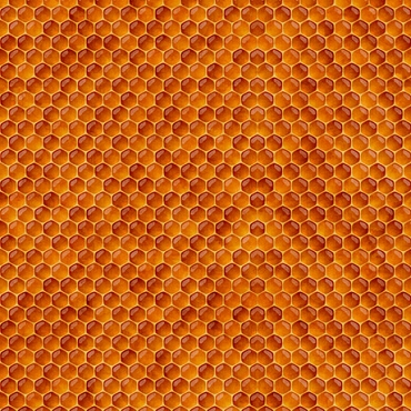 Always Face The Sunshine QT Fabrics Honeycomb Terracotta