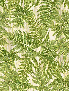 Autumn Symphony Timeless Treasures Packed Green Ferns White