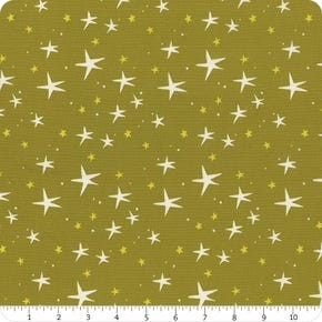 Playground Windham Fabrics Herbal Starry