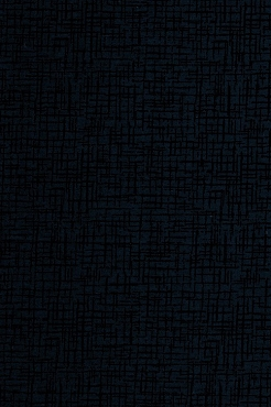 Fit for a Queen Quilt Backing 108 by 110 Westrade Textiles Betula Navy