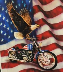 Liberty Ride Northcott Digital Eagle Motorcycle Panel 36 x 44