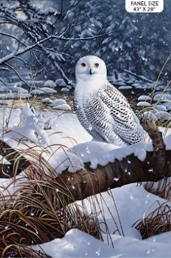 Snowy Owl Northcott Digital Panel 28 X 43